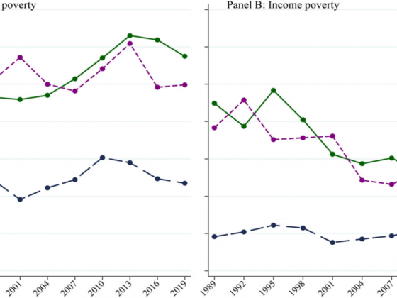 Trends in Income and Net Worth Poverty, by Race and Ethnicity